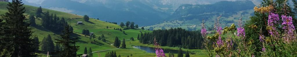 Header Schweiz